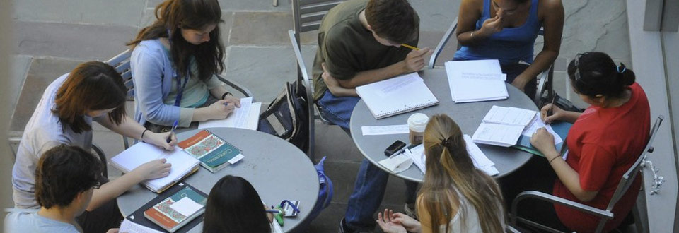 A group of students studying outside
