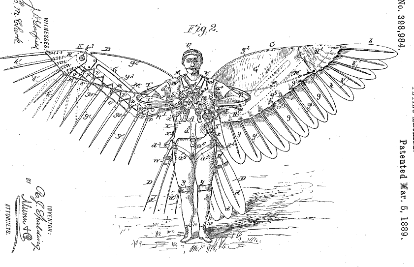 technical diagram of wings