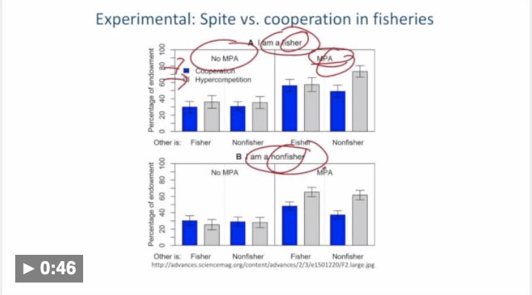 Image showing annotations on a lecture slide featuring two charts about fisheries