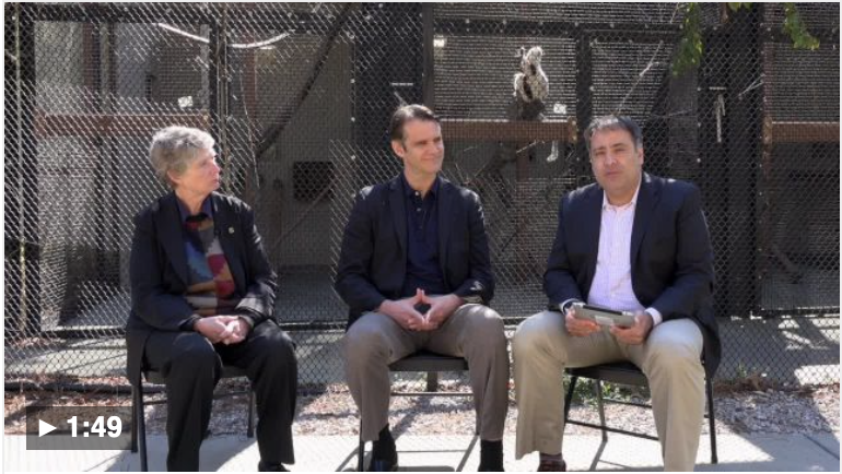 An interview with two experts at Duke Lemur Center